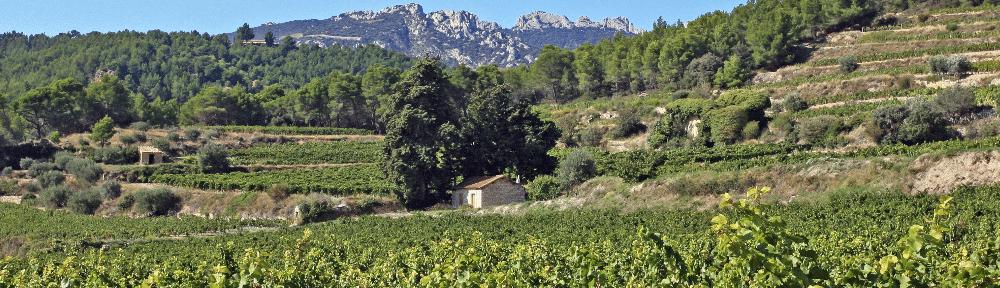 bannière - beaumes_de_venise - provence