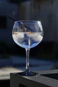 gin_tonic_cocktail_simple_gin