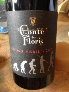 conte_des_floris_homo_habilis_2011