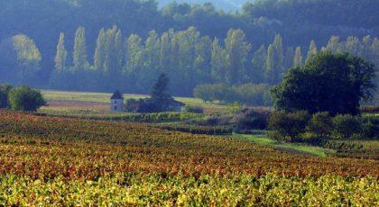 Vignoble de Cahors, Sud-Ouest