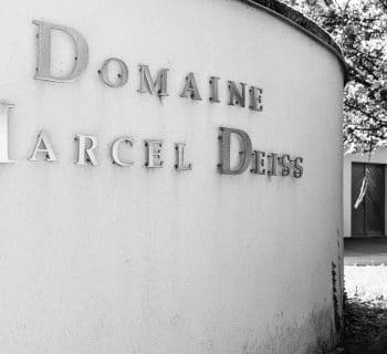 domaine_Marcel_deiss